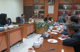 کمیته برنامه ریزی تاسیس هنرستان هنرهای زیبا در استان خراسان جنوبی برگزار شد