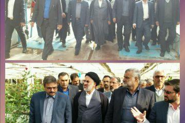 وزیر جهاد کشاورزی از مجتمع پرورش گل رز هزار دستان بیرجند بازدید کرد
