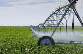 صرفهجویی حدود ۲۵ میلیون متر مکعب آب در سال با اجرای سامانههای نوین آبیاری در خراسان جنوبی
