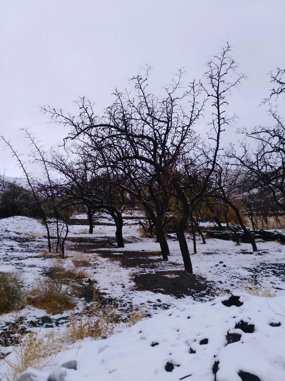 طبیعت زیبای برفی ارتفاعات بیرجند عکس موبایلی ابوالفضل حسن پور