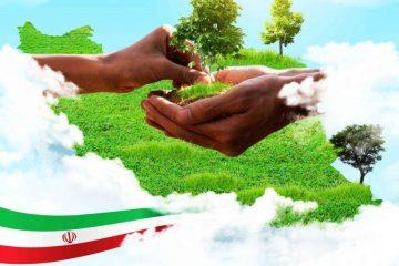 رویداد ملی ۱۴ آذر در استان،کاشت ۱۲۰ هزار اصله نهال در ۹۰۰ هکتار از عرصه های خراسان جنوبی