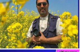 """معرفی داوران اولین جشنواره منطقه ای فیلم کوتاه (مستند داستانی ) و عکس """"کویر و زندگی طبس"""