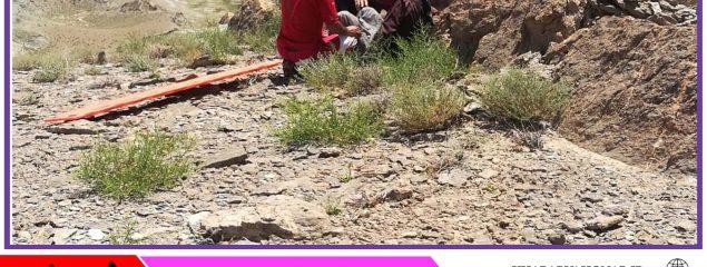 جستجوی ۴ساعته برای یافتن جوان گمشده در ارتفاعات درح سربیشه