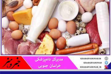 صادرات ۶۶۰ هزار دلاری محصولات دامی از خراسان جنوبی