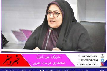 اتاق فکر مجازی زنان و خانواده در خراسان جنوبی برگزار می شود