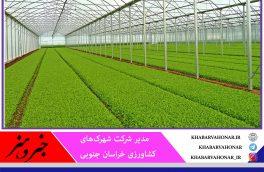 مجوز احداث ۶۷۲ هکتار گلخانه در خراسان جنوبی صادر شد