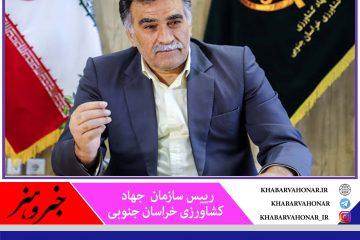 حمایت  جهاد کشاورزی خراسان جنوبی از زرشک کاران استان
