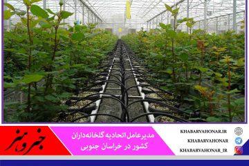 توسعه گلخانهها تنها راه نجات منابع آبی و زیرزمینی کشور است
