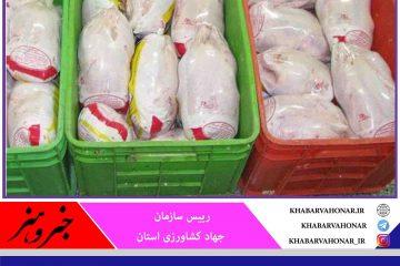 🔰 آغاز توزیع ۳۰۰ تُن مرغ منجمد در خراسان جنوبی با قیمت ۱۵هزار تومان برای مصرف کننده