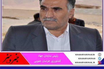 دستور وزیر جهاد کشاورزی برای حمایت از محصولات استراتژیک خراسان جنوبی