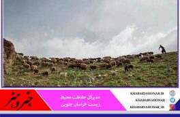 ظرفیت عشایر در حفاظت محیط زیست  خراسان جنوبی به کار گرفته میشود