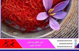 خرید حمایتی ۲۰۰ کیلوگرم زعفران از کشاورزان خراسان جنوبی