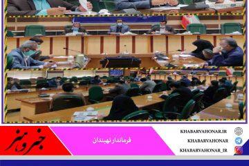 شهرستان نهبندان در حوزه نظارت بر طرح های اشتغال روستایی و عشایری، رتبه نخست را در استان کسب کرده است