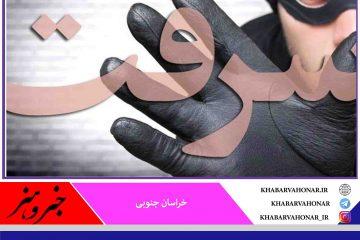 دستگیری باند سارقان و کشف ۱۰فقره سرقت در فردوس