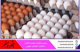 مراکز عمده توزیع تخم مرغ در خراسان جنوبی افزایش مییابد