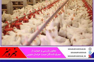 ۲ واحد متخلف تولید مرغ گوشتی در خراسان جنوبی شناسایی شد