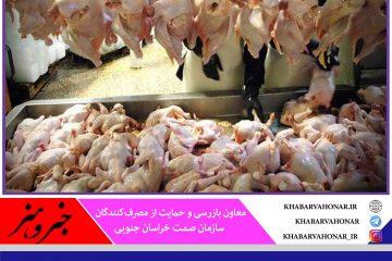 شناسایی ۹۹ واحد مرغ گوشتی متخلف در خراسان جنوبی