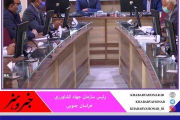اختصاص ۱۴ هزار تن نهاده دامی به خراسان جنوبی