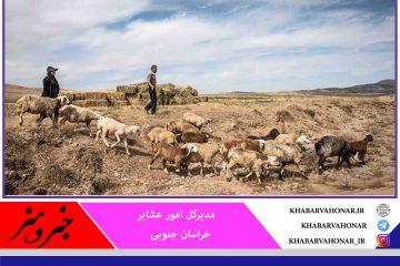 پرداخت تسهیلات برای عبور عشایر خراسان جنوبی از بحران خشکسالی