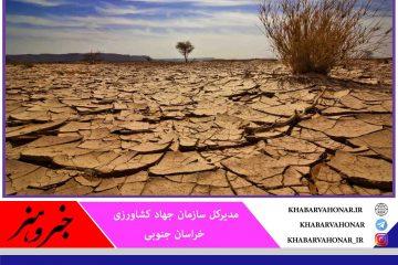 خسارت ۲ هزار میلیارد تومانی خشکسالی به کشاورزی خراسان جنوبی