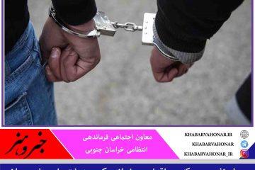 عاملان حیوانآزاری در شهرستان زیرکوه دستگیر شدند