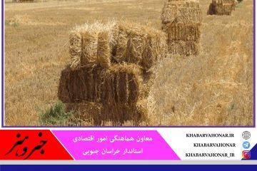 ۲۵ میلیارد تومان تسهیلات خرید علوفه در خراسان جنوبی پرداخت میشود