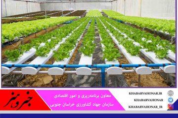 ۲۴۰ میلیارد تومان اعتبار به بخش کشاورزی خراسان جنوبی اختصاص یافت