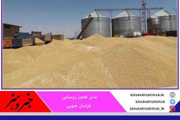 خرید توافقی ۶۵ هزار تن محصولات کشاورزی در خراسان جنوبی