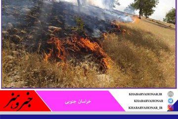 حریق در ۱.۵ هکتار از جنگل ماژان خراسان جنوبی آتش مهار شد