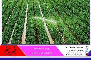 با اجرای سیستمهای آبیاری نوین۸۰ میلیون مترمکعب آب در خراسان جنوبی صرفهجویی شد