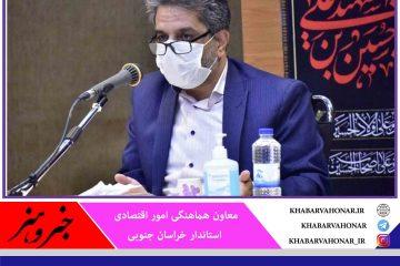خراسان جنوبی پیشرو در تحقق مشاغل خانگی