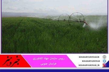 آبیاری نوین در ۱۲ هزار هکتار اراضی کشاورزی خراسان جنوبی در حال اجراست